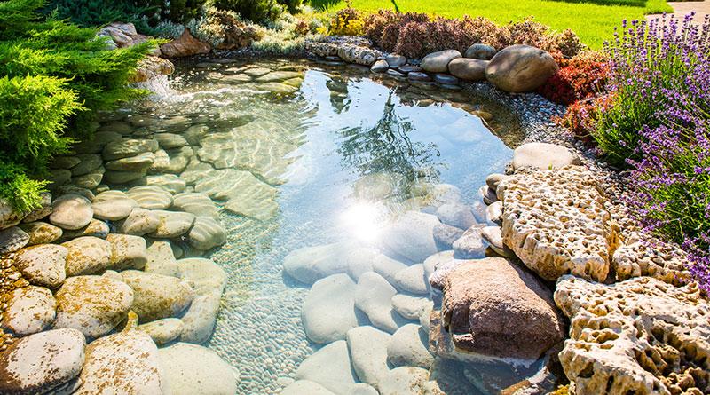 Wasser im Garten. Teichanlage von Trieschmann